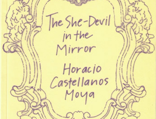 Horacio Castellanos Moya: The She-Devil in the Mirror