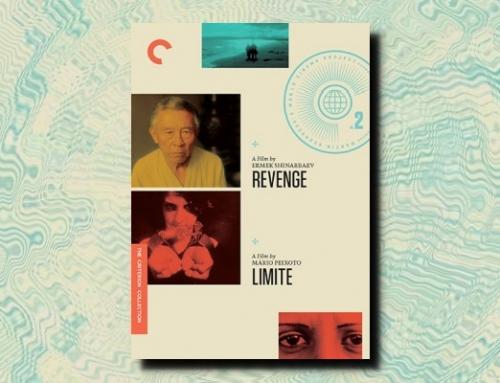 Ermek Shinarbaev: Revenge