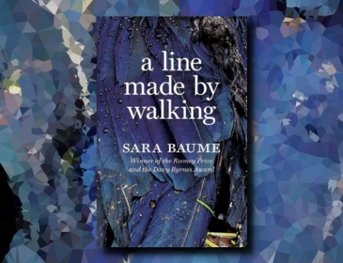 Sara Baume: A Line Made by Walking