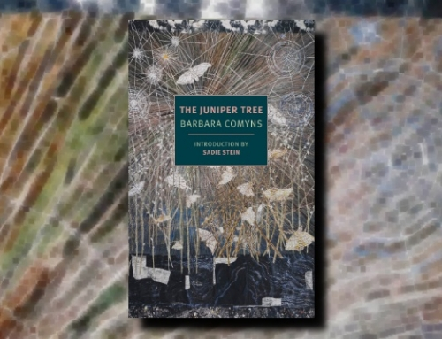 Barbara Comyns: The Juniper Tree