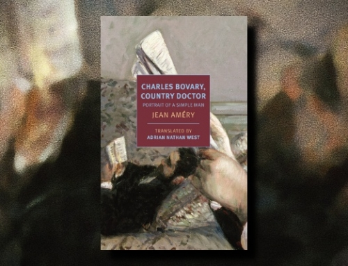 Jean Améry: Charles Bovary, Country Doctor: Portrait of a Simple Man