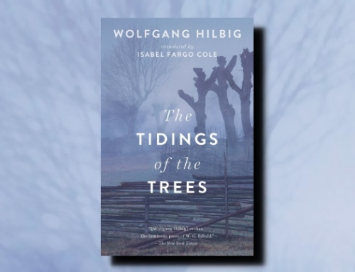 Wolfgang Hilbig: The Tidings of the Trees