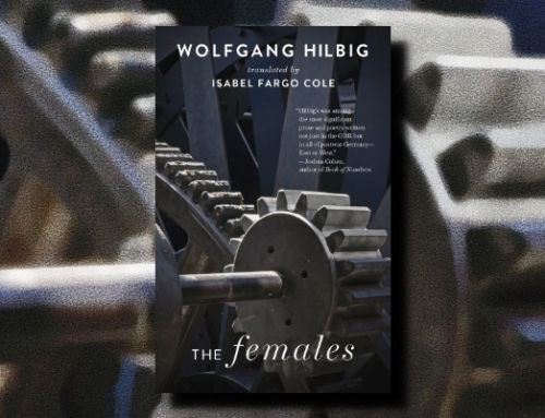 Wolfgang Hilbig: The Females