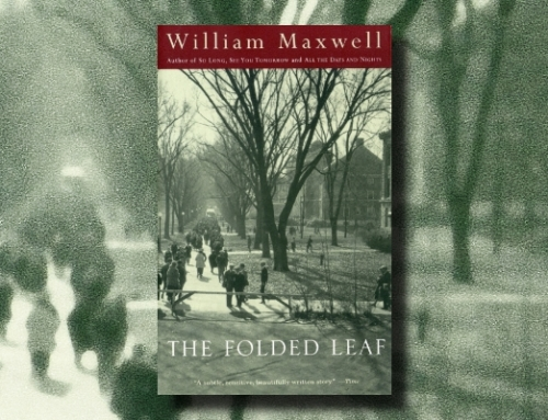 William Maxwell: The Folded Leaf